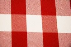 Large Gingham Gabardine - Red