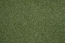 Grass Green Outdoor Chenille