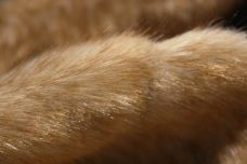 Mink Check Fur - Caramel