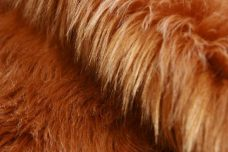 Shag Fur - Copper
